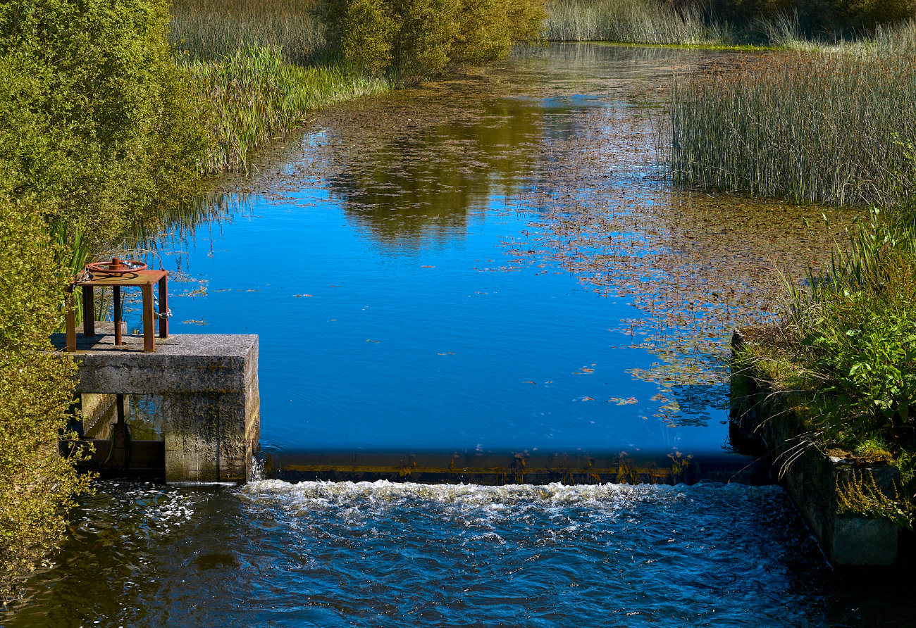 Visita a la laguna de Cospeito, Lugo