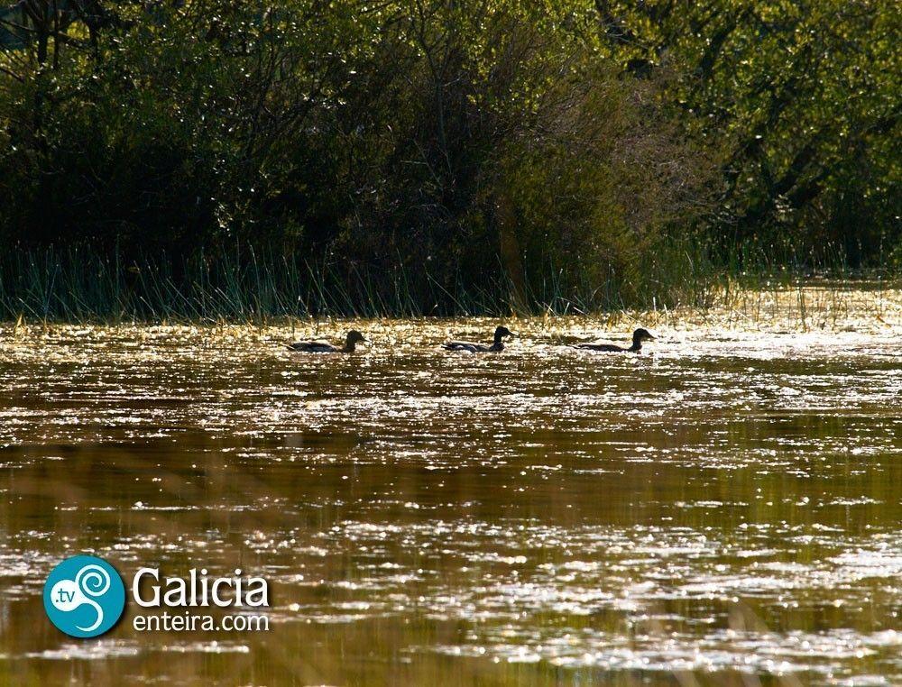 Laguna-de-Caque-Bardancos-Castro-de-Rey