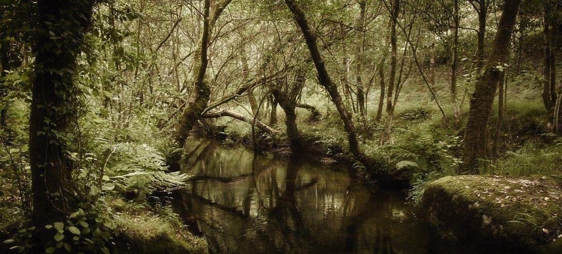 Río Barosa - Barro