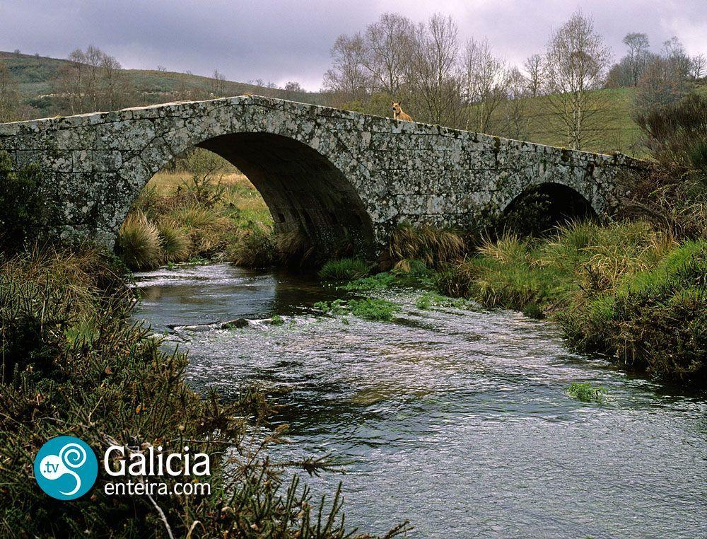 Puente de Vilariño Frio