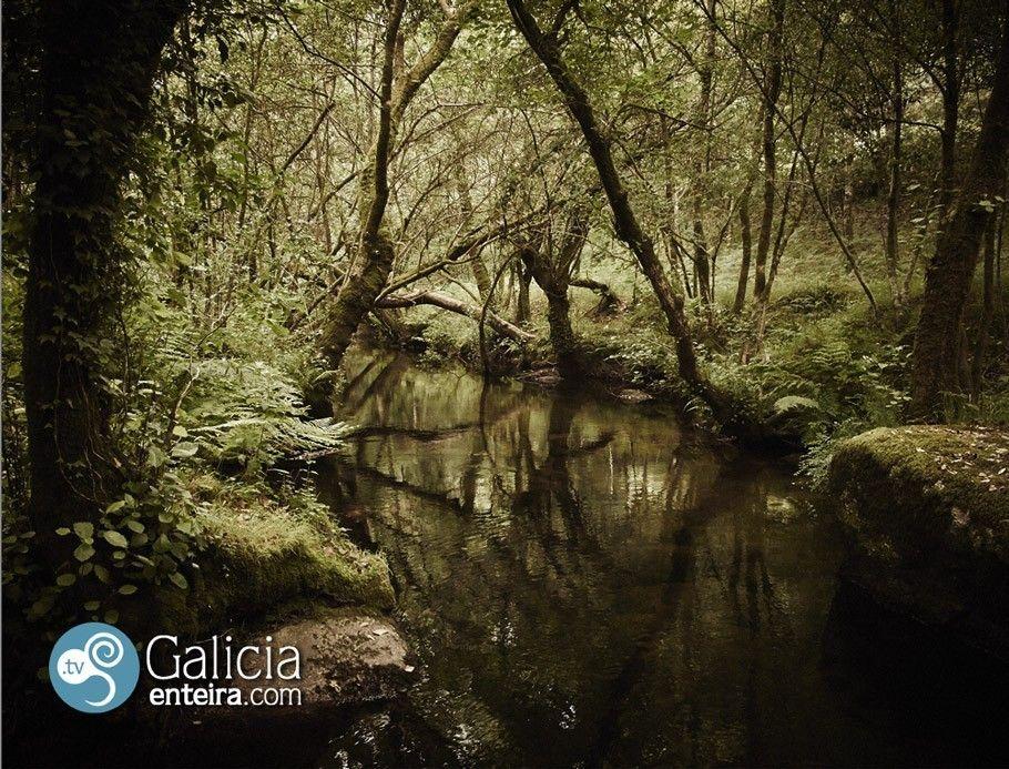 Parque de la Naturaleza del Río Barosa - Barro