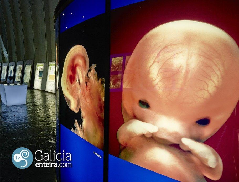 Museo Domus - A Coruña