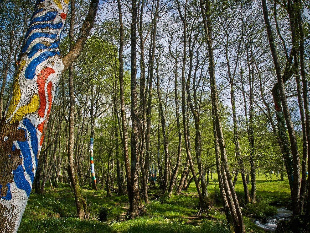 Bosque de O Rexo – Allariz
