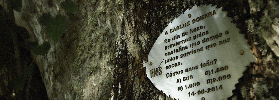 Rios - Ourense