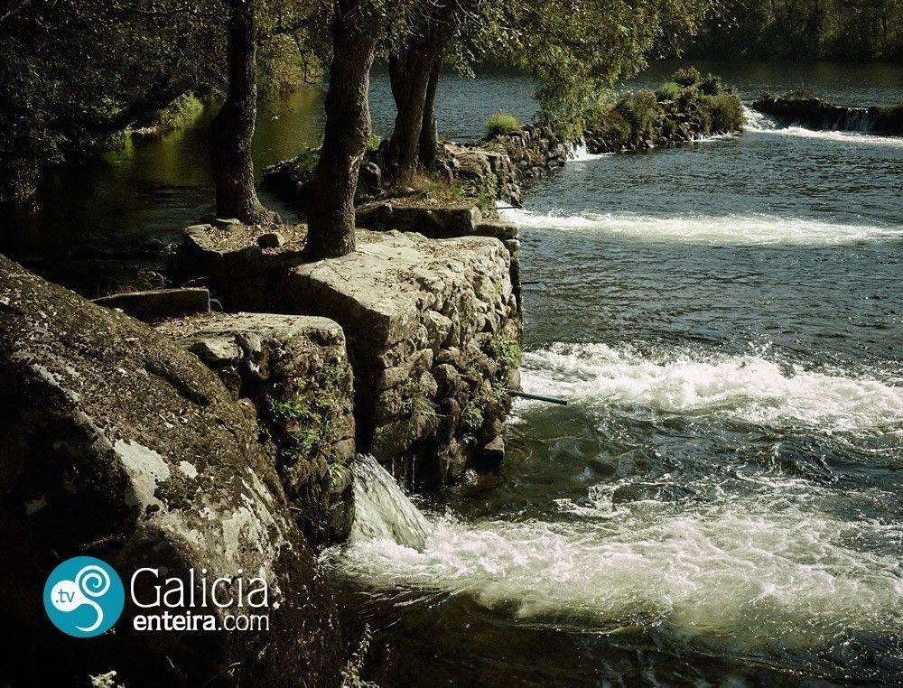 Pesqueiras río Ulla - Padron