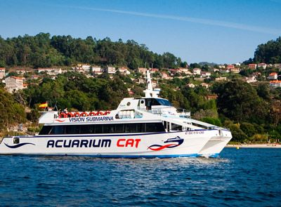 acuarium-cat
