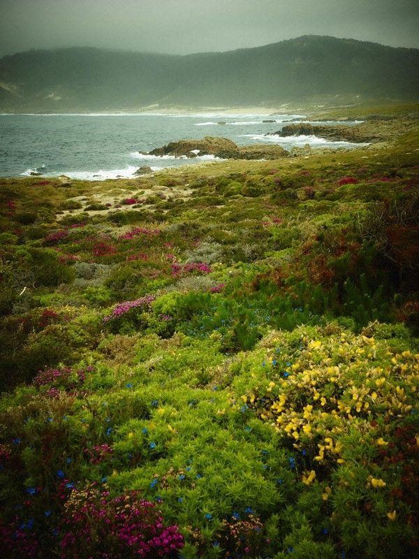 Areal do Trece – Camariñas