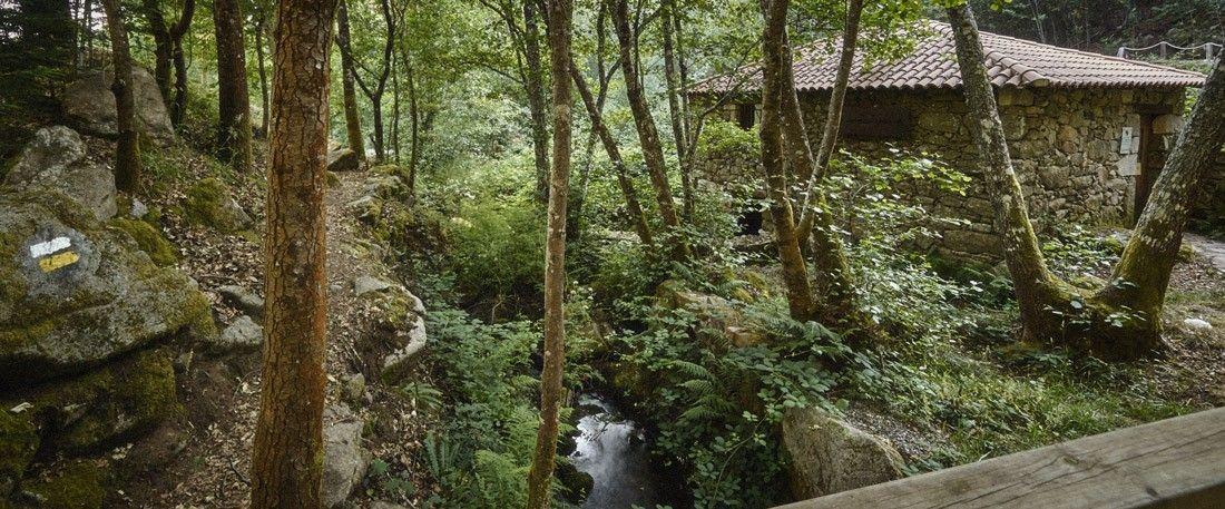 molinos del río Xábrega