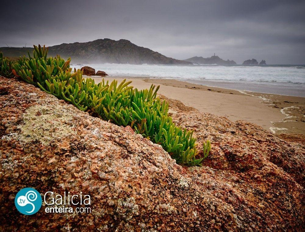 Playa Area Longa - Camariñas