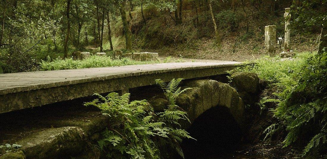 Ponte das Febres
