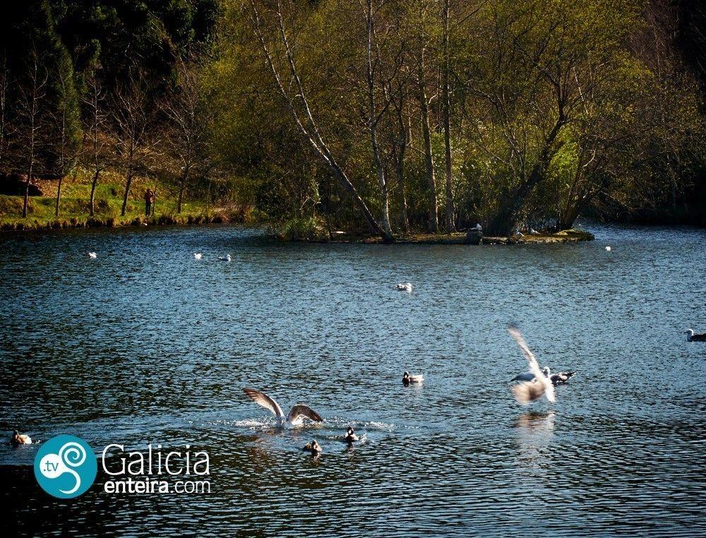 Lago Castiñeiras-Vilaboa