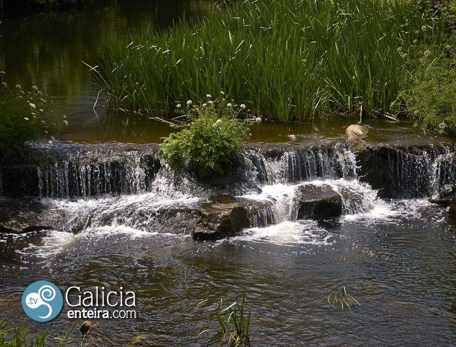Río Pequeño - Sarria