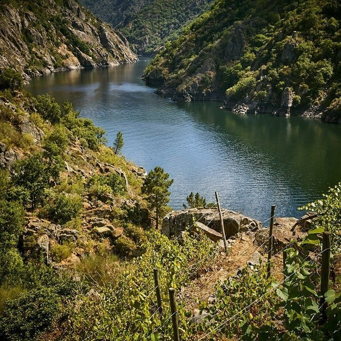 Río Sil - Chancis