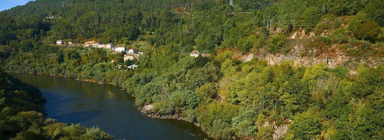 Rio Miño en Crecente