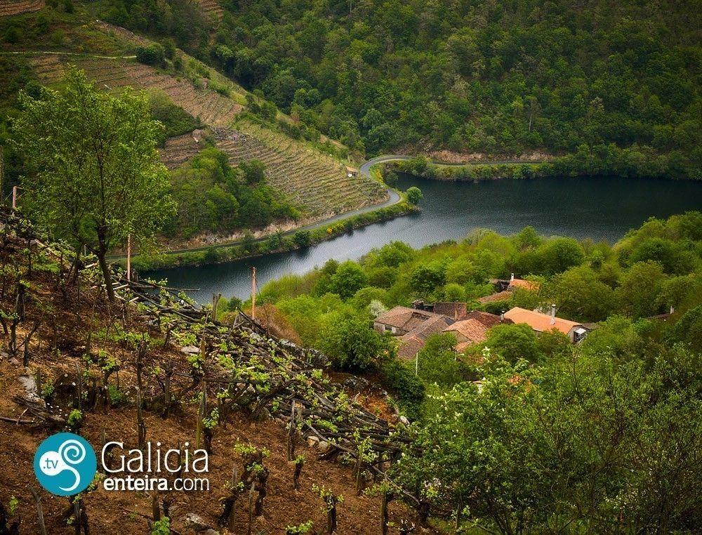 Río Miño en Guxeva - Chantada