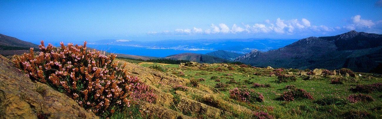 Sierra da Capelada