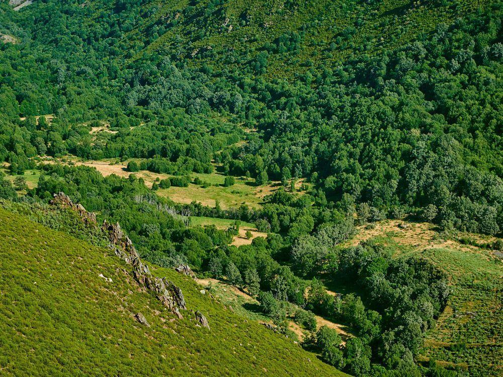 Valle del Xares - A Veiga