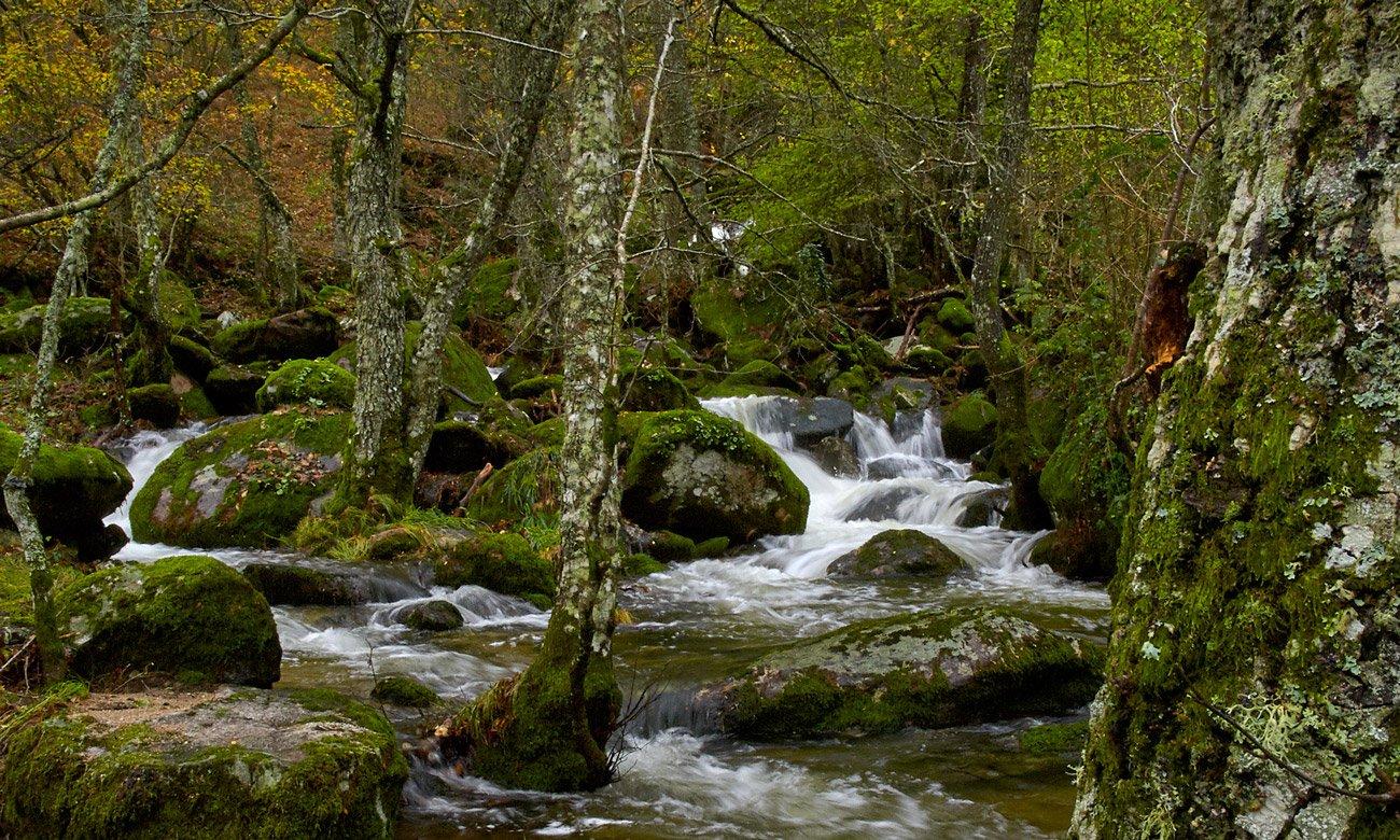 Rio San Lazaro - Manzaneda