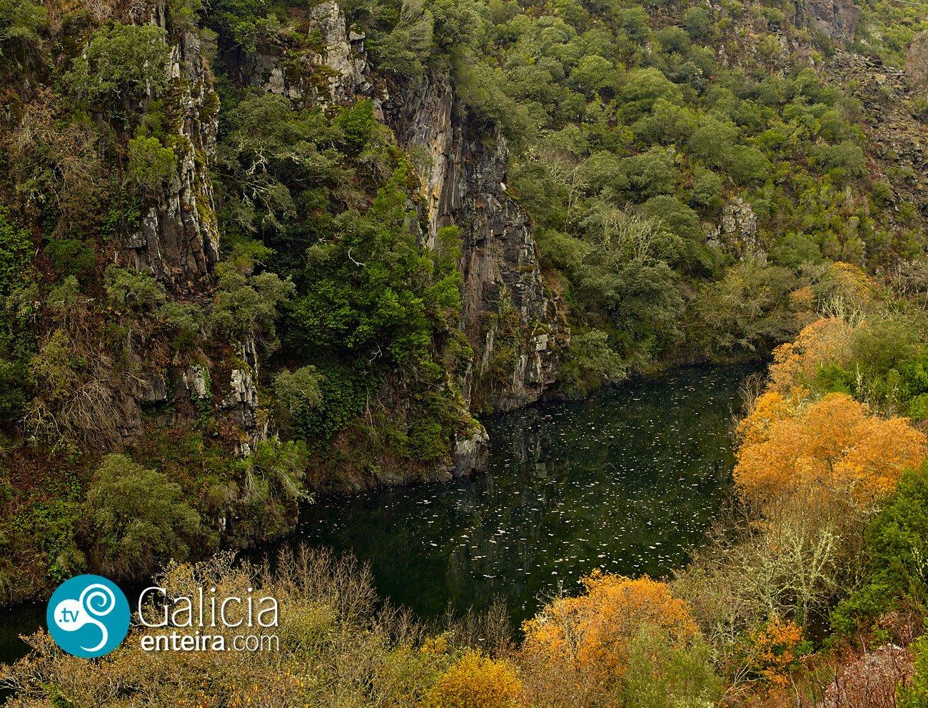 Rio Navea Ourense