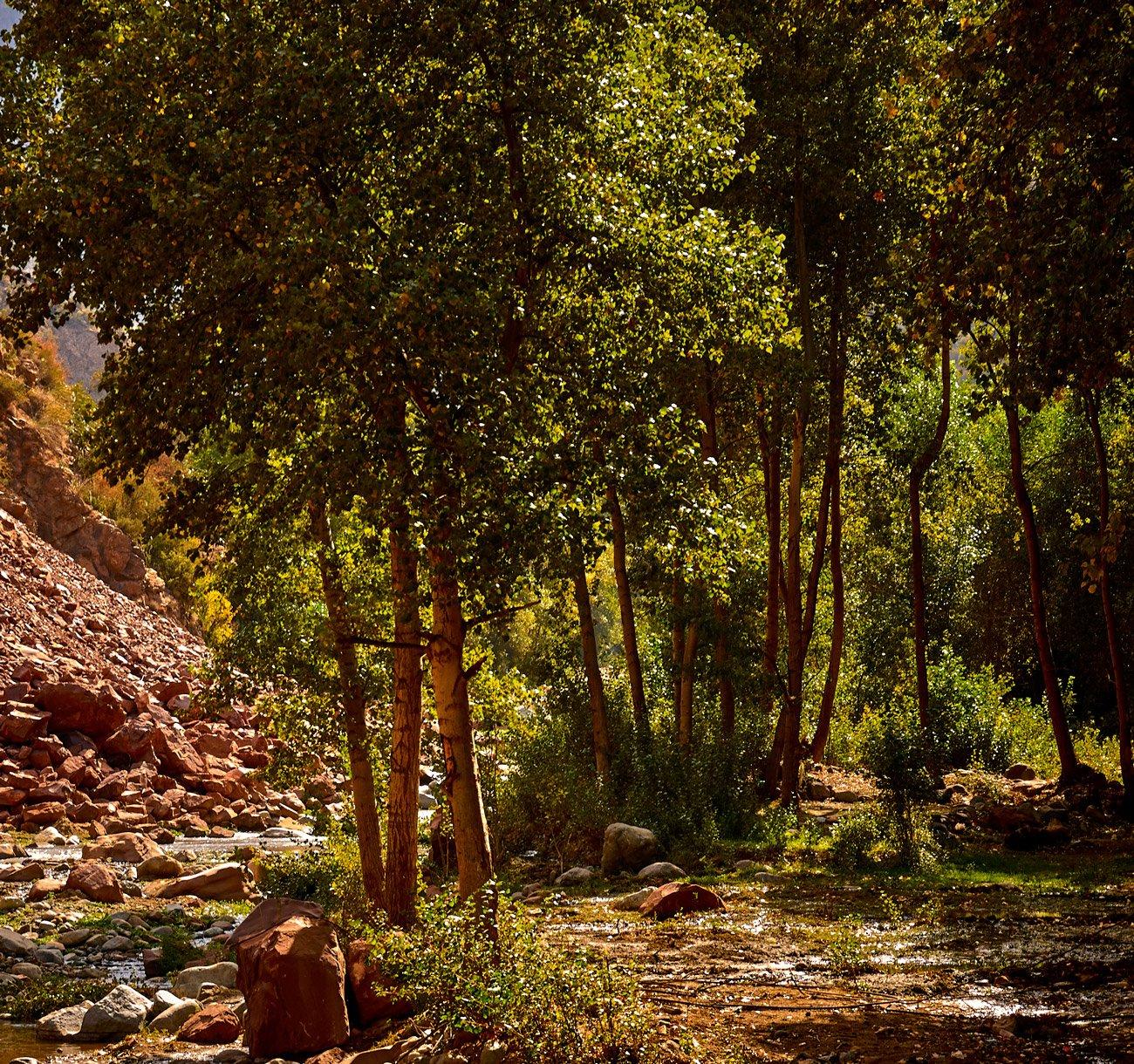 Valle de Ourika