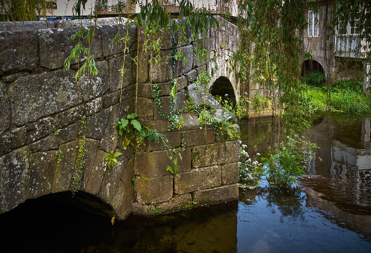 Puente sobre el río Bermaña