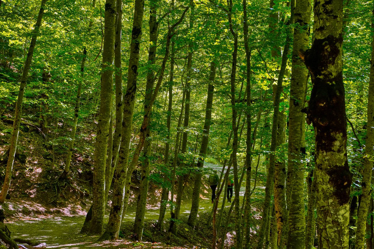 Parque Nacional de Ordesa y Monte Perdido