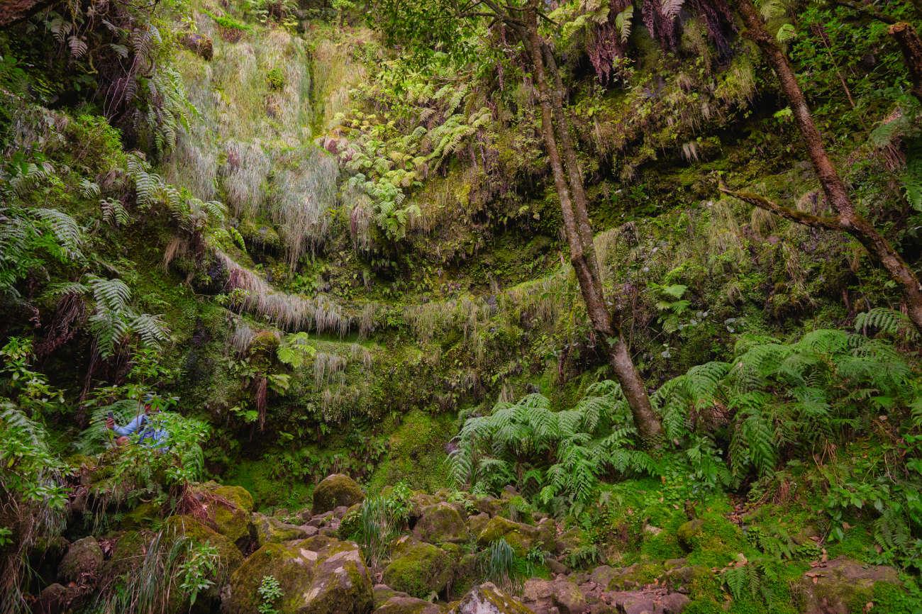 Caldeirão Verde Madeira