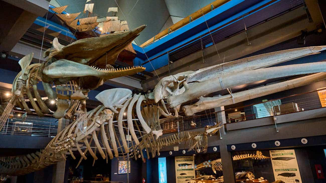 Museo Marítimo del Cantábrico Santander
