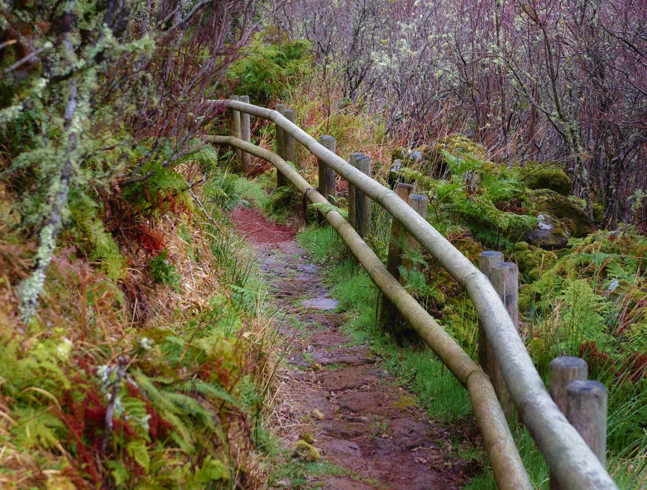 Furnas do Enxofre Terceira Azores