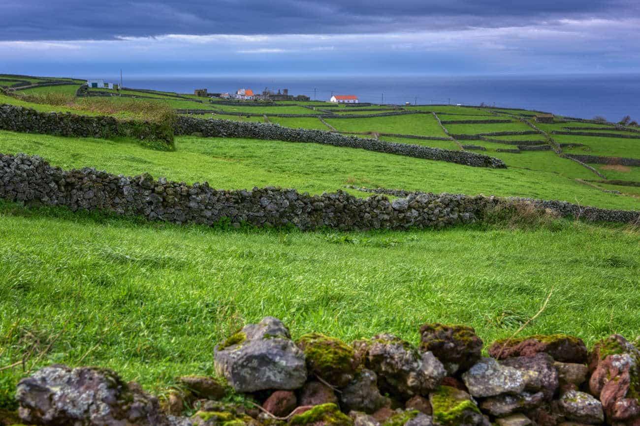 Serreta Terceira Azores